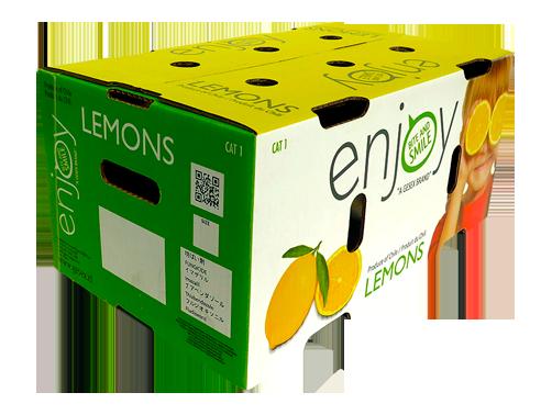 slide-limones2