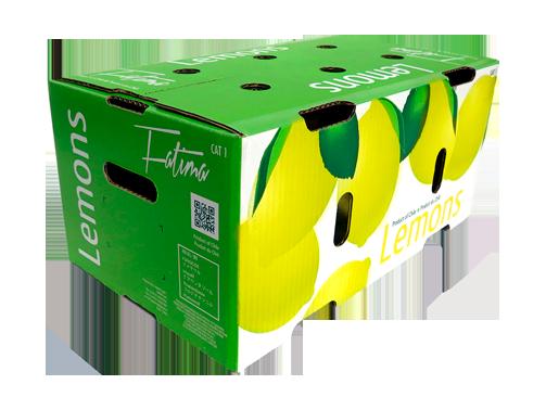 slide-limones3